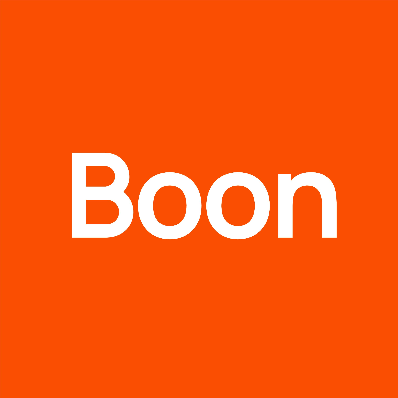 boon-services-logo-image